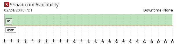 Shaadi.com availability chart